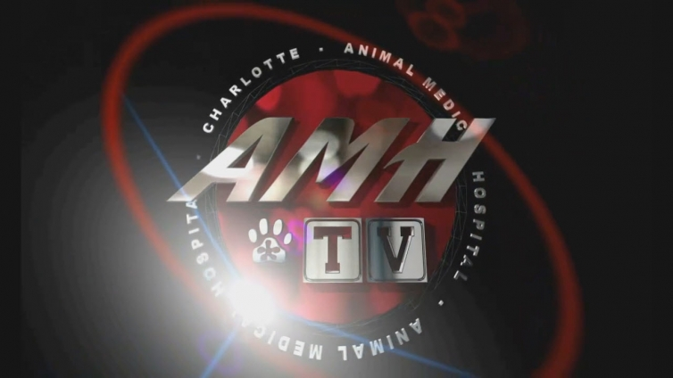 AMH-TV Digital Signage