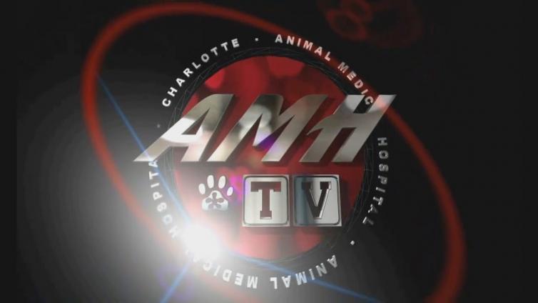 AMH-TV Digital Signage